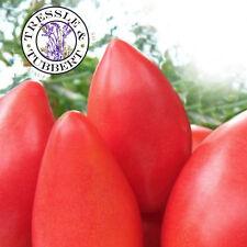 Rare Raspberry Eldorado Tomato - 10 seeds - UK SELLER