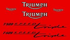 TRIUMPH SPEED TRIPLE 955 T509 (1998) STICKER DECAL MOTO