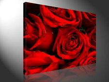 Stretched Canvas Print - RED ROSES Flower Photography Large Wall Art e2545