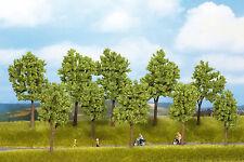 Noch 24100 H0 Bäume Frühling, 5 Stück #NEU in OVP##