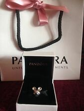 Genuine Disney Pandora Mickey Mouse Head Charm With Box & Bag!