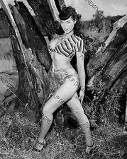 """Bettie Page Vintage 10"""" x 8"""" Photograph of Pin-up Burlesque Queen 50's reprint"""