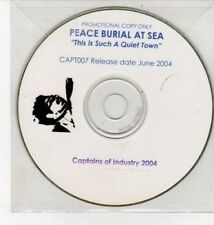 (DD100) Peace Burial At Sea, This Is Such A Quiet Town - 2004 DJ CD