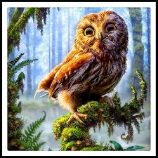 5D DIY Diamond Painting Owl 100% full square drill, Canvas size approx 40x40cm