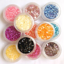 12 Mix Colors Crushed Shell for Nail Art False Acrylic UV Gel Tip Decoration Set