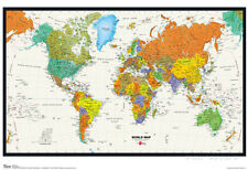 World Map Physical And Political Poster Poster Print, 19x13