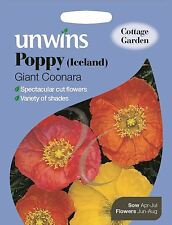 Unwins Pictorial Packet - Flower - Poppy Iceland Giant Coonara - 1000 Seeds