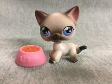Littlest Pet Shop LPS GREY AND WHITE SIAMESE CAT # 5 w/ accessories