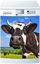 Adesivo lavastoviglie decocrazione cucina apparecchi di mucca ref 651 60x60cm