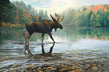 Moose Crossing by Russell Cobane Art Print Poster Wildlife Cabin Decor 13x19