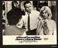 """1 PHOTO DU FILM """"L'HOMME A LA PEAU DE SERPENT"""" (The fugitive kind)1959 M. BRANDO"""