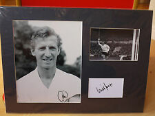 Mounted Cliff Jones Signed Card & Photo Display - Spurs & Wales Football