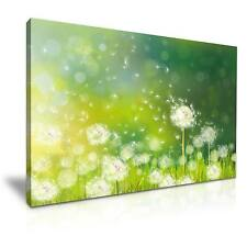 Large Dandelion Flower Canvas Wall Art Picture Print 76x50cm Special Offer
