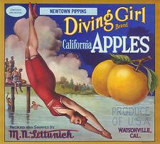 APPLE CRATE LABEL VINTAGE WATSONVILLE SCARCE DIVING GIRL W FANCY SCRIPT 1920S