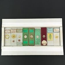 Nine Fine Victorian  Microscope Slides English & French Group No 2