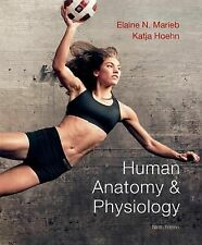 Human Anatomy and Physiology Marieb, 9th Edition. PLUS Instructor Resource DVDs