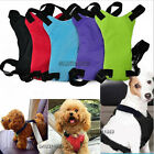 Car Vehicle Safety Clip Seat Belt Seatbelt Harness Leash Lead Cat Dog Pet Buckle