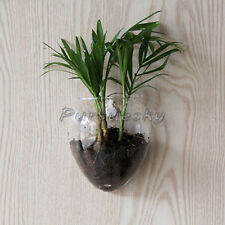Wall Hanging Glass Flower Vase Hydroponic Container Fish Tank Wedding Home Decor