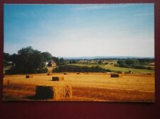 POSTCARD A GOLDEN HARVEST