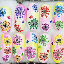1 Sheet Adhesive 3D Nail Art Sticker Decal Colorful Small Flower Manicure XF3022