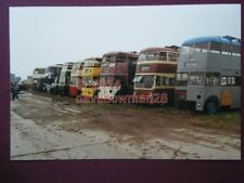 PHOTO  GROUP OF TROLLEY BUSES AWAITING RESTORATION