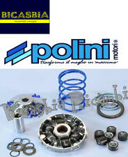 7208 - VARIATORE POLINI EVOLUTION DM 16,0 50 2T PIAGGIO LIBERTY SFERA TYPHOON