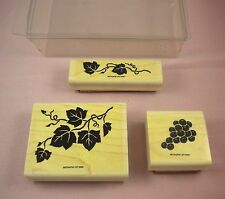 Stampin Up Decorative Grape Ivy Vines Wood Rubber Stamp Set 1996 Retired