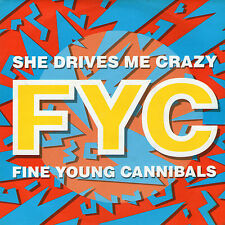 """Fine Young Cannibals - She Drives Me Crazy - 7 """" Single"""