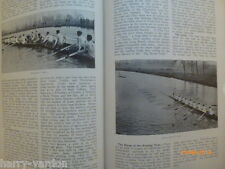 Rowing Olympic Boat Racing Henley Regatta Sculling Sculls Old Photo Article 1911