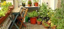 Kit Jardin potager spécial Balcon lot de + de 2000 Graines BIO plante legume pot
