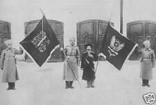 Turkish Ottoman Erzerum Captured Flags 1915 World War 1 6x4 Inch Reprint Photo 1
