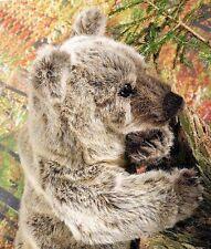 Kösener 4606 - Grizzly  Bär Julia 51 cm Kuscheltier Stofftier Plüschtier