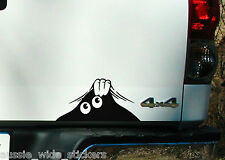 "New 200mm Funny 4x4 ute wagon car accessories Stickers ""PEEK A BOO"""