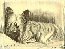1930 Book Plate Dog Print Skye Terrier Scott Langley Rona Sketch