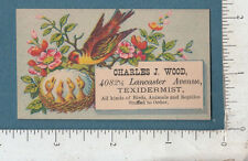 8900 Charles J. Wood taxidermist trade card business card Philadelphia, PA