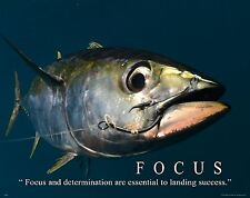 Salt Water Tuna Big Game Fishing Motivational Poster  Lures Reels Rods MVP483