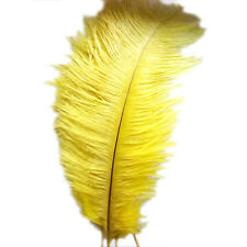 12 Kinds of Color New Natural 10-12 Inch Ostrich Feathers Decorations Gold LW