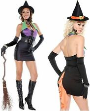 MISS BEWITCHED SEXY HALLOWEEN WITCH COSTUME WOMENS SMALL / MEDIUM