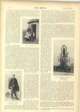 1899 zebra pour earls court m. peter attias dan fechley sligo safer