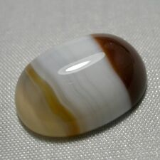 Echter Karneol Oval Cabochon 16.85ct 20x14.5mm