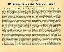 Die ersten Windhundrennen auf dem Kontinent im belgischen Ostende Memorabile1904