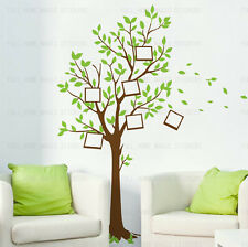 Large Family Tree Bird Photo Frames Wall Stickers Home Decor Nursery Art Decals