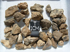 27.2 grams NWA xxxx unclassified found in LIBYA Meteorites with information card