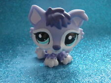 ORIGINAL Littlest Pet Shop husky 1810  Shipping with Polish