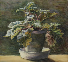 Late Victorian English Watercolor Painting of Potted Begonia Plant unsigned