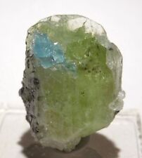 RARE Diopside Blue Apatite crystals Merelani Tanzania Terminated Colorful 12g