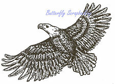 Bald Eagle Bird in Flight Wood Mounted Rubber Stamp NORTHWOODS M639 New