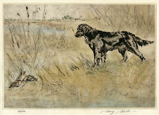 FLATCOATED RETRIEVE DOG ART LIMITED EDITION DRYPOINT ENGRAVING Henry Wilkinson