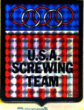 vtg prismatic sticker novelty USA Screwing Team Olympic American Van Vanner
