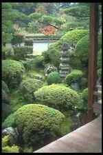 249004 Temple Garden Nara Prefecture A4 Photo Print